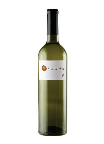 vin blanc du mexique
